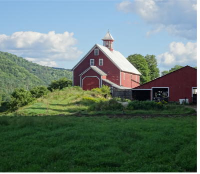 Liberty Hill Farm