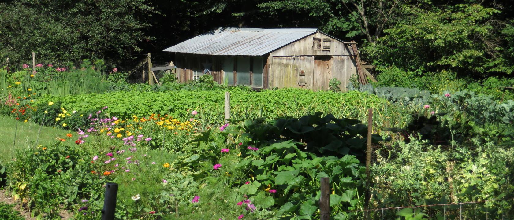 Uphill Farm in Rochester Vermont